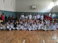 Taekwondo Patosi vs Ari Master Academy.